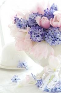 bouquets de fleurs de printemps